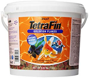 Tetra fin gold fish flakes best goldfish food